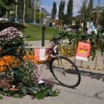 Park(ing) Day в ИНТЕРПРЕД СТЦ София, 20.09.2013